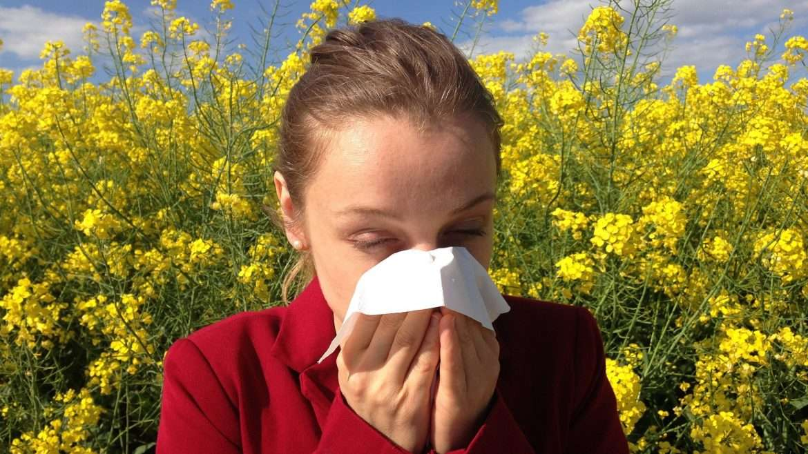 Allergic Rhinitis, Hay Fever, Spring Allergies, Fall Allergies
